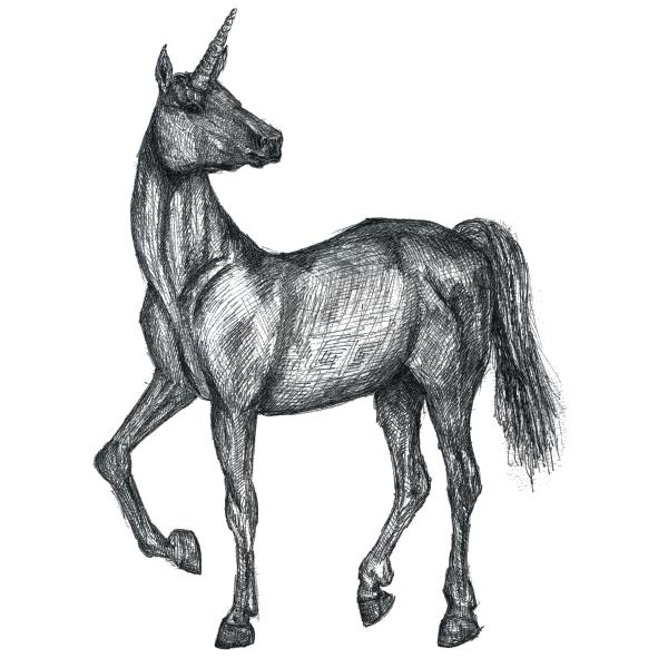 Ötscher Spirits das Einhorn vom Obersee Illustration Klara Naynar