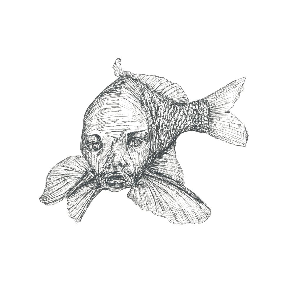 Der Pilatusfisch vom Ötschersee